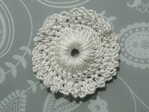 A white bloom lace flower.