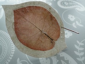 Leaf with paper border and a needle making holes into the margin