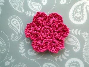 A dark pink 6 petal flower