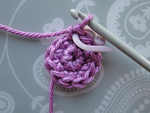Stitch marker in 1st stitch of next round